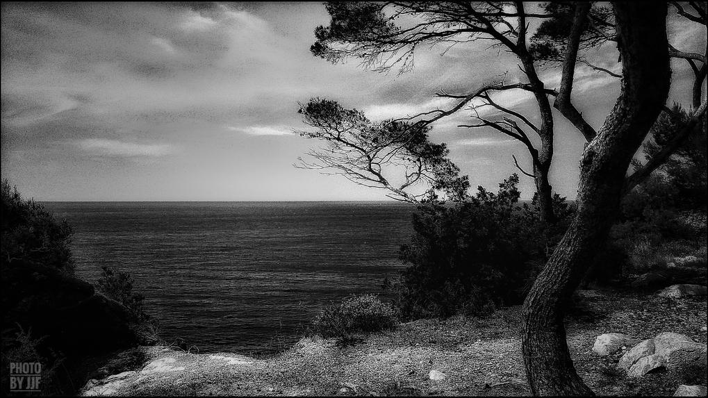 entre2brises_aupres_de_mon_arbre_6