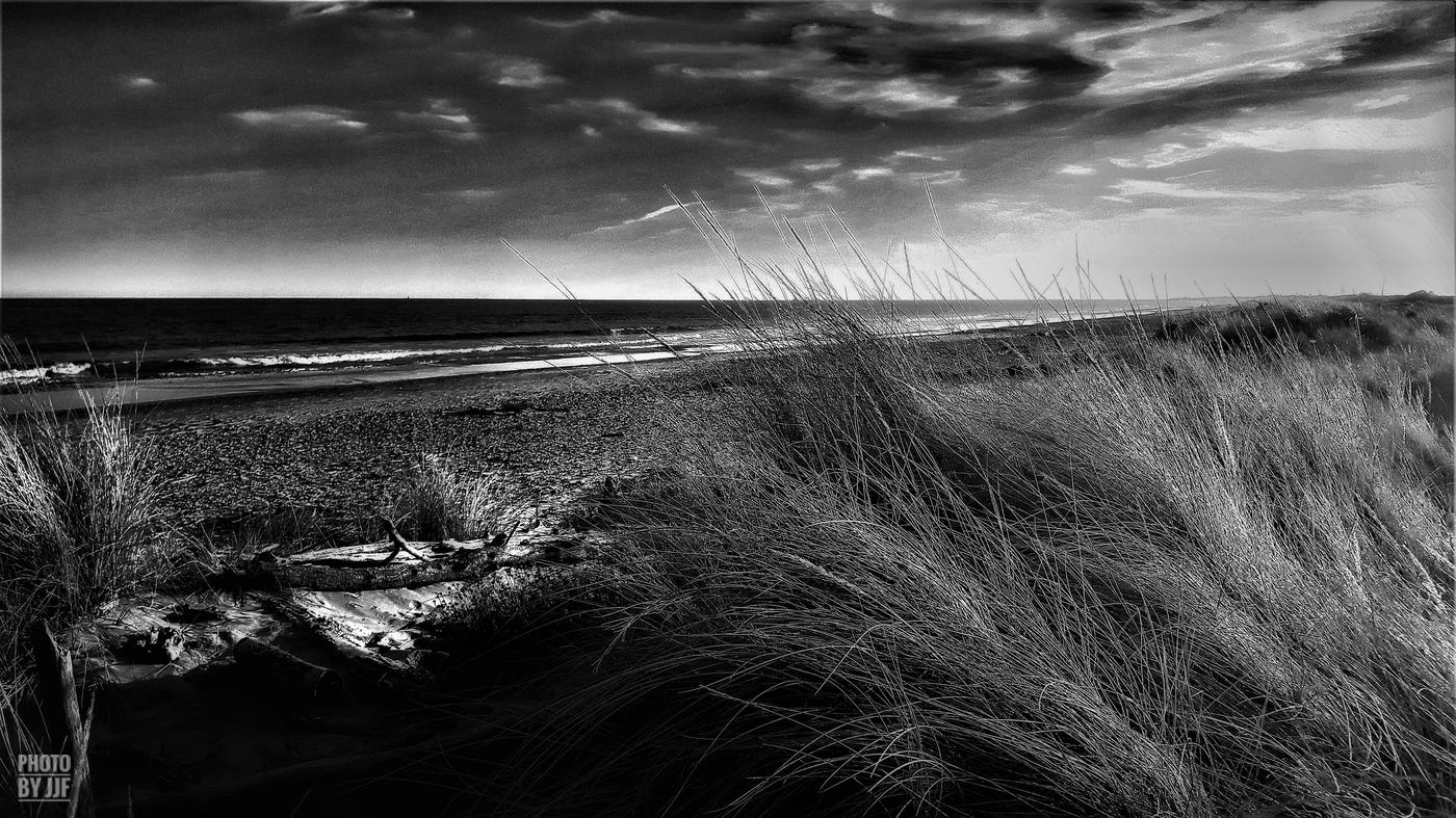 entre2brises_Sur la plage_abandonnee_JJF1